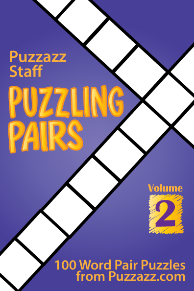 Puzzling Pairs #2